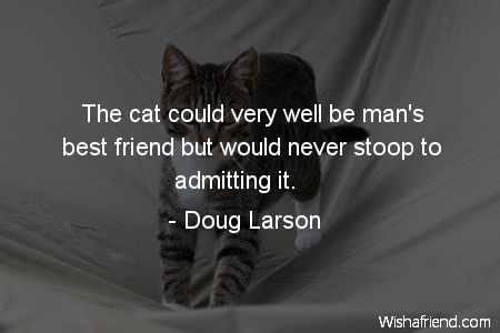 Cat Quote Pictures