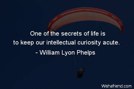 what is intellectual curiosity