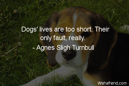 Dogs Lives Are Too Short Their Only Fault
