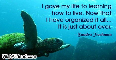 life-I gave my life to learning how to live. Now that I have organized it all... It is just about over.