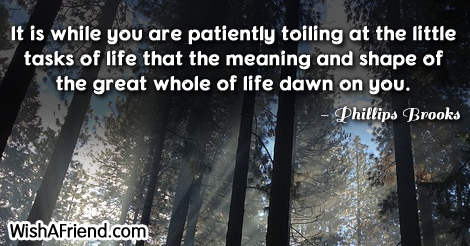 life-It is while you are patiently toiling at the little tasks of life that the meaning and shape of the great whole of life dawn on you.