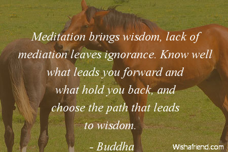 wisdom-Meditation brings wisdom, lack of mediation leaves ignorance. Know well what leads you forward and what hold you back, and choose the path that leads to wisdom.
